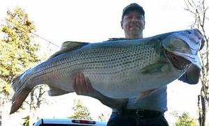 World Record Bass Caught