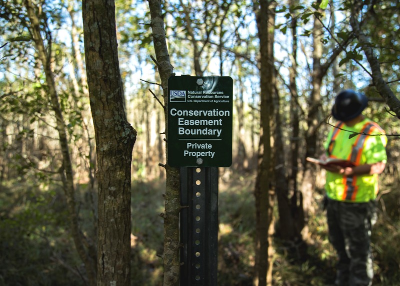 Surveying Services for the NRCS of Louisiana