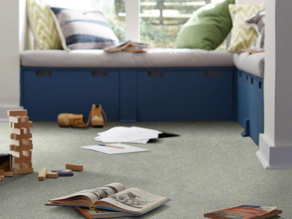 Carpet by Shaw at Village Carpet Shop