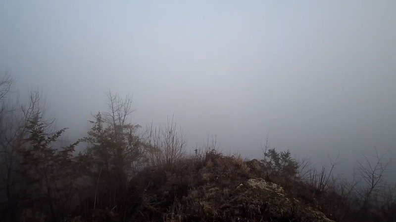 HOW THE CAM WILL LOOK ON FOGGY MORNINGS