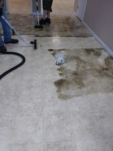 Flooring being cleaned with our Kaivac Machine