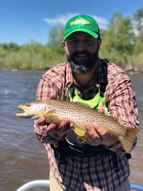 Elk River Brown Trout