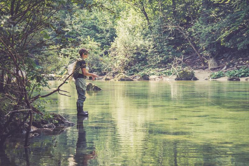 The White River Inn, White River Resort, trout fishing Arkansas, guided fishing Arkansas, fishing Arkansas, White River fishing
