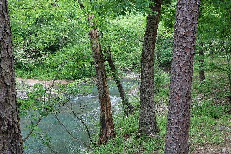 The Cossatot River near Mena, Arkansas.