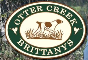 Otter Creek Brittanys