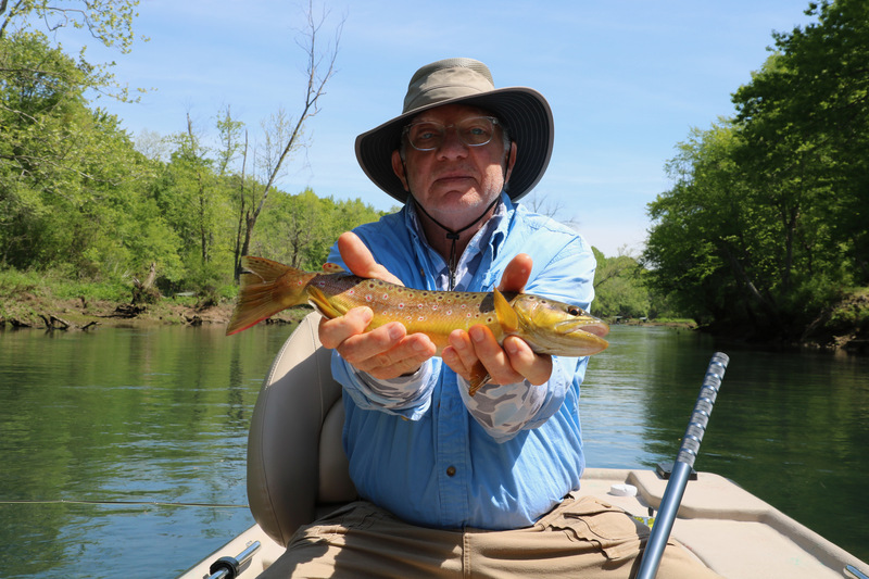 Bill Kiefer with a nice Little Red River Brown Trout